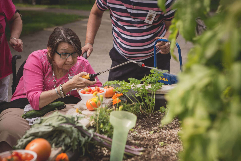 Trinity Village raised garden beds
