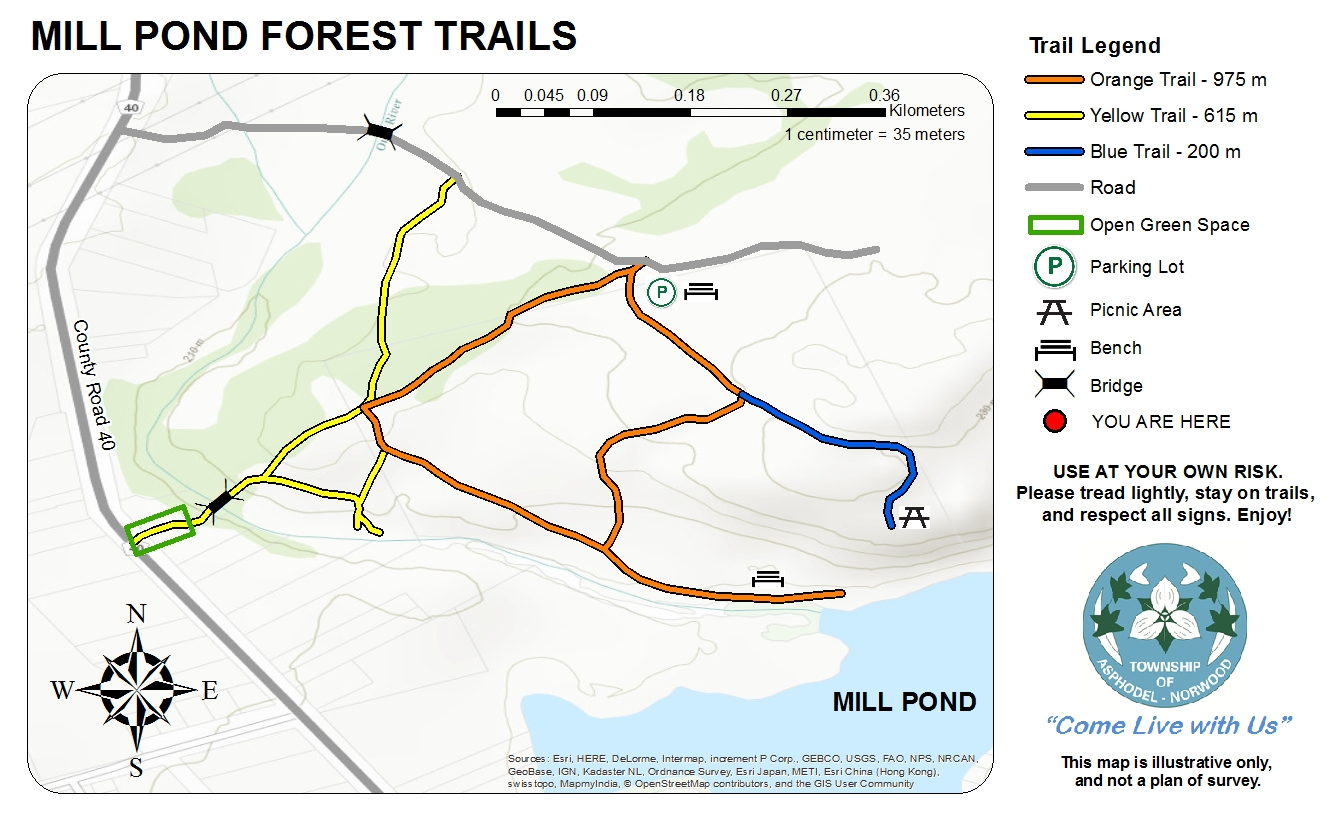 Map - Mill Pond Forest Trails