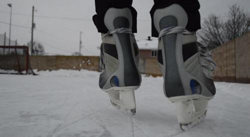 skates web
