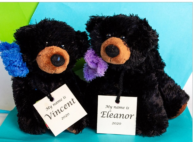 Meet Vincent and Eleanor - Volunteer fundraising bears