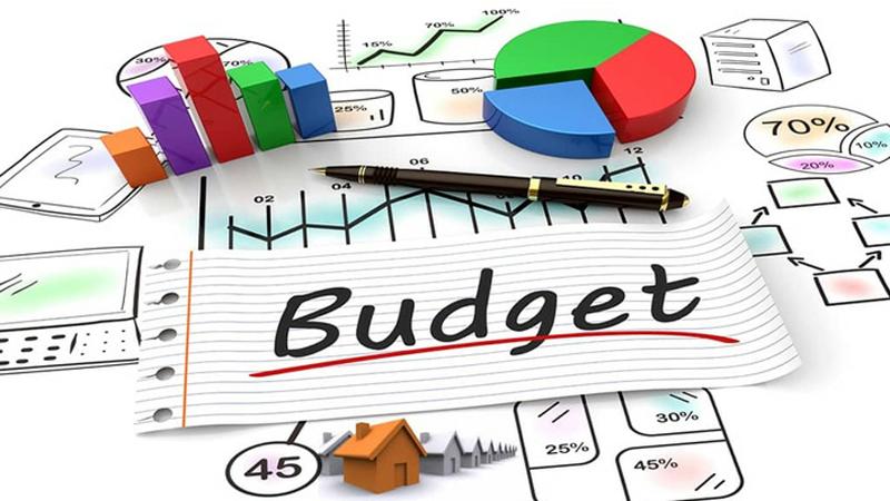 Pre-Budget Questionnaire